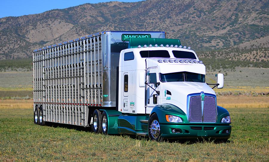 Custom vehicles on Pinterest | Custom Trucks, Semi Trucks ...