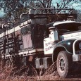 Everyone has heard the stories and seen the pictures of the amazing 'road trains' that run across the dry, hot […]